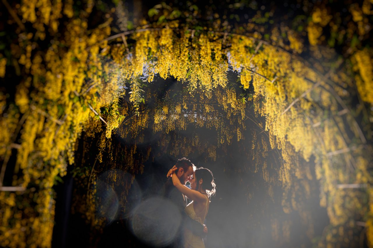 bride and groom embracing under backlit tunnel of wisteria vines